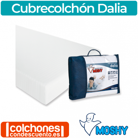 Funda Colchón Moshy Dalia